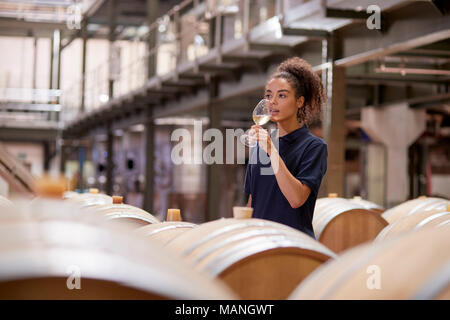 Young woman wine tasting in a wine factory warehouse - Stock Photo
