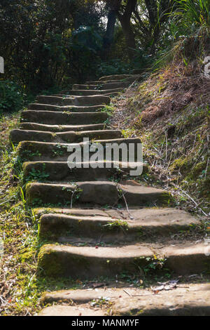 Old, worn down, uneven stone steps with moss on the sides winding through forest - Stock Photo