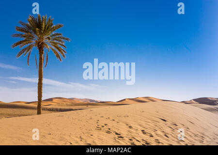 Merzouga in the Sahara Desert in Morocco - Stock Photo