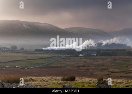 Steam locomotive 60163 TORNADO at  Ribblehead with the first scheduled steam hauled passenger train  (0825 Appleby - Skipton) since 1968