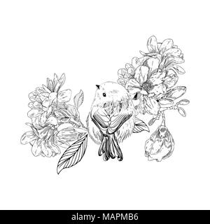bird with flowers in vintage style. Spring birds sitting on blossom branches. Linear engraved art. Isolated on white background. - Stock Photo