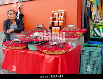A woman food seller sits at her makeshift stall outside an entrance to the main market area in Oaxaca, Mexico.
