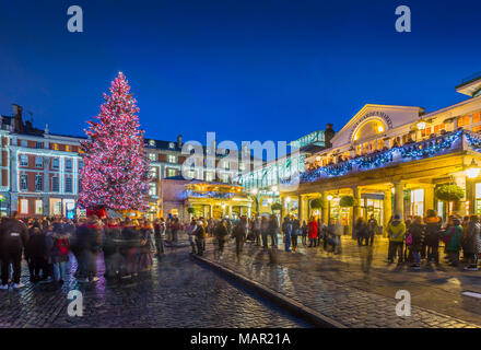 View of Christmas Tree in Covent Garden at dusk, London, England, United Kingdom, Europe - Stock Photo