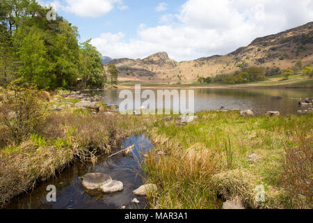 Blea Tarn, Little Langdale, The Lake District, UNESCO World Heritage Site, Cumbria, England, United Kingdom, Europe - Stock Photo