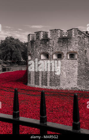 Tower of London poppies for 100 years centenary of world war one 'Blood Swept Lands and Seas of Red' - Stock Photo