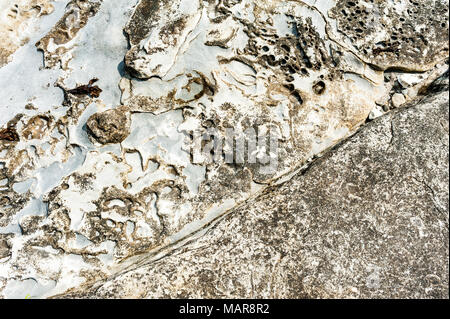 Close up detail of abstract patterns in sandstone formations at Newcastle Island Marine Provincial Park, British Columbia, Canada. - Stock Photo