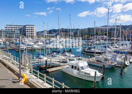 NEW ZEALAND WELLINGTON NEW ZEALAND Yachts moored in  Chaffers marina Clyde Quay wharf Wellington Waterfront Wellington New zealand - Stock Photo