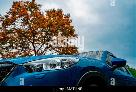 Blue compact SUV car with sport and modern design parked near red deciduous tree with blue sky and clouds. Environmentally friendly technology. Busine - Stock Photo