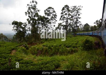 Traveling by train between Kandy and Ella. Sri Lanka - Stock Photo