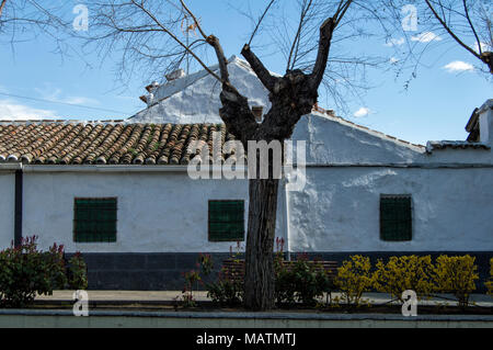 white facade town house with tree in the town of Polan, province of Toledo. Castilla la Mancha. Spain. - Stock Photo