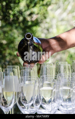 Mans hand pours sparkling wine into glasses at outdoor event. Celebrating with champagne outside on sunny day. - Stock Photo