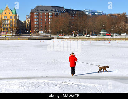 HELSINKI, FINLAND - MARCH 26, 2018: Man in red jacket walks with dog on ice of Gulf of Finland - Stock Photo