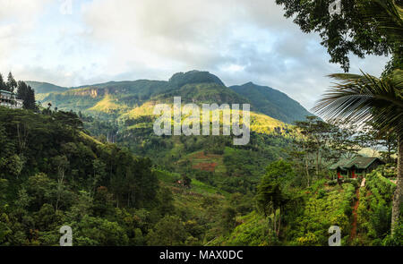 Sri lankan highlands with tea gardens and waterfall in distance, on sunny morning. Ramboda Falls, Sri Lanka - Stock Photo