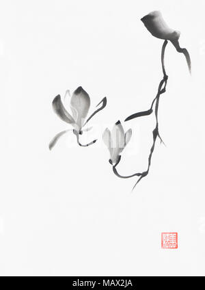 Beautiful black and white magnolia branch with two flowers artistic oriental style illustration, Japanese Zen Sumi-e black ink painting on white rice  - Stock Photo