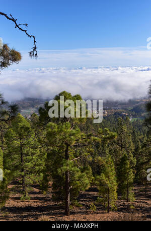 Taken from above the Clouds within the Teide National Park and looking down on the Coastal Lowlands of Tenerife in the Canary Islands. - Stock Photo