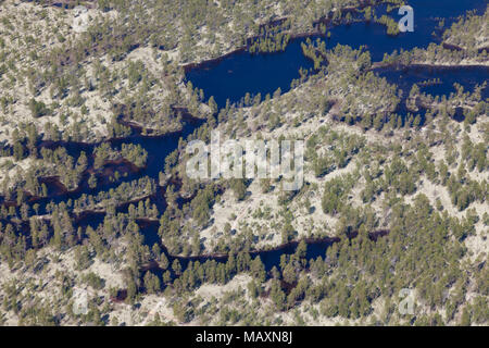 Typical pasture of reindeer in forest-tundra, aerial view - Stock Photo
