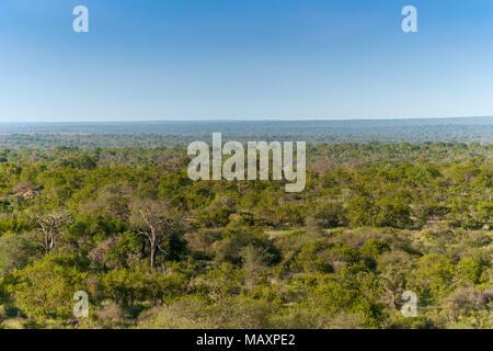 Kruger National Park, Mpumalanga, South Africa - Stock Photo
