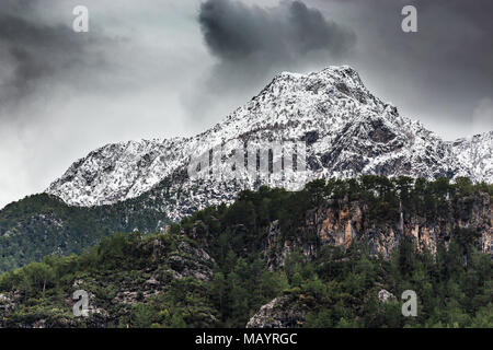 Horizontal landscape with snow capped mountains covered by pine forests - Stock Photo