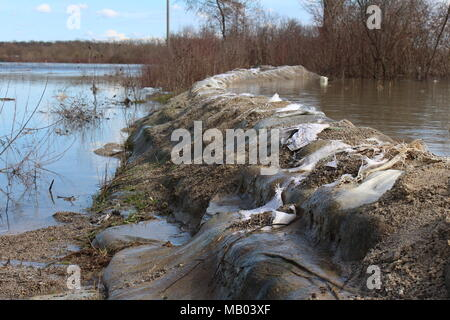 Old sandbags flood protection with completely destroyed sandbags barely holding back mighty river during flood with trees and branches in background - Stock Photo