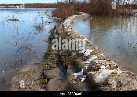 Old sandbags flood protection with destroyed sandbags holding back river during flood with bridge, trees and branches in background - Stock Photo