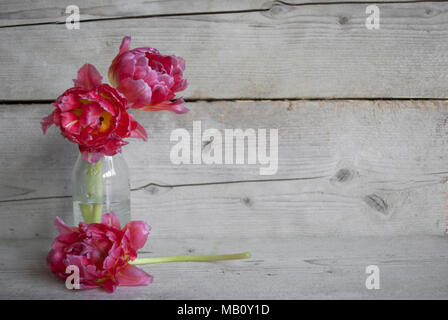 Pink Dutch peony tulips in glass bottle, on old wooden background with petals - Stock Photo