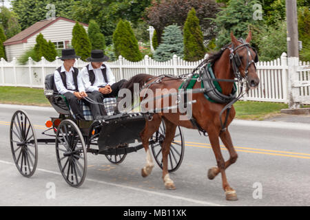 Bird-in-Hand, PA, USA - June 17, 2012: An open Amish buggy used for transportation used by two young men on a rural road in Lancaster County, PA. - Stock Photo