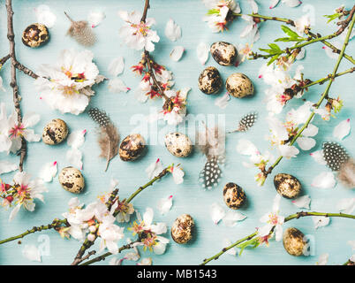 Easter holiday background, texture and wallpaper. Flat-lay of tender Spring almond blossom flowers on branches, feathers and quail eggs over light blu - Stock Photo