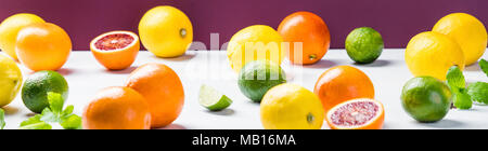 Citrus fruits (oranges, lemons and limes) - Stock Photo