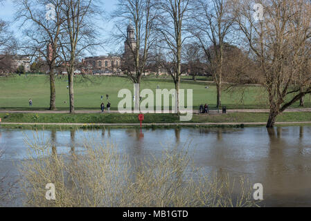 Swollen river Severn in Shrewsbury shropshire as the rain water rolls off the local hills increasing water levels of river running through the town - Stock Photo