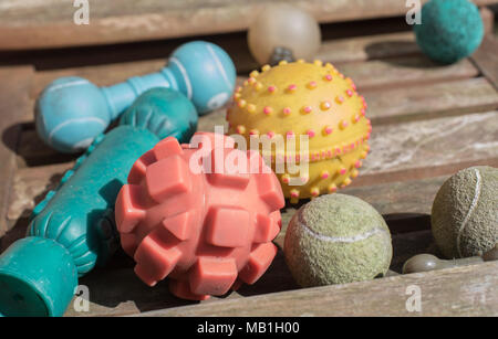 A collection of dog toys on a bench in an urban garden, tennis balls, bone shaped toys amongst others - Stock Photo