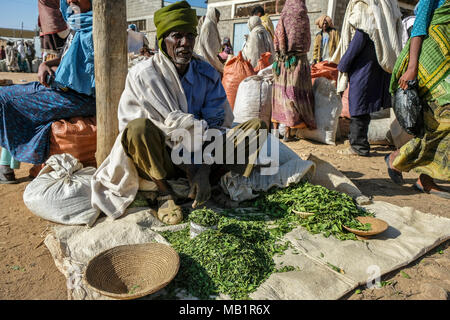 Hawzien, Tigray, Ethiopia - January 10, 2018: An unidentified man selling khat in the Hawzien market in Hawzien, Tigray region, Ethiopia. - Stock Photo