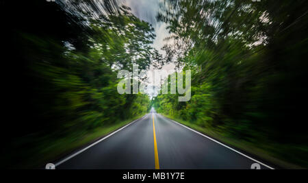Empty asphalt road and speed motion blur on highway in summer with green trees forest at countryside - Stock Photo