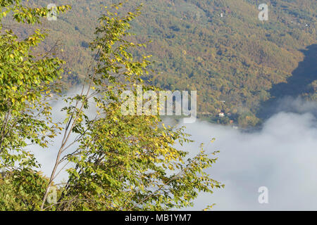 View of low cloud in valley and tree clad moutain slope, River Drina, Tara National Park, Serbia, October - Stock Photo