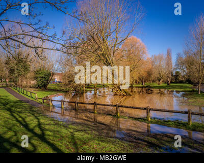 Flooded park land due to High water level at Cod Beck, Thirsk, North Yorkshire, UK. - Stock Photo
