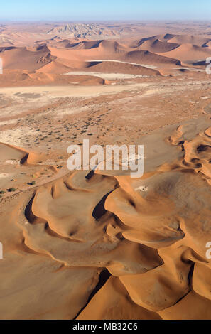 Sand dunes in the Namib Desert, top centre the Witberg (White Mountain, 426m), with Camelthorn trees (Acacia erioloba) at the