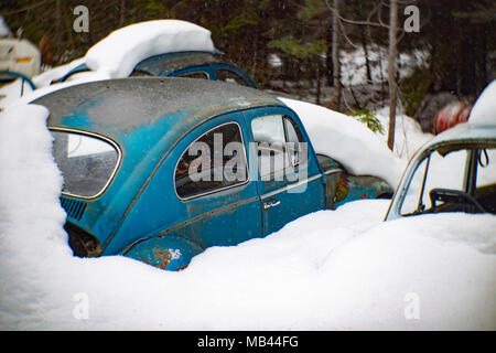 A  blue 1964 Volkswagen Beetle, burried in the snow, in a wooded area, in Noxon, Montana.  This image was shot with an antique Petzval lens and will s - Stock Photo