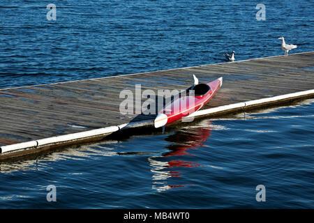 WA15041-00...WASHINGTON - Kayak on the Small Boat dock at Green Lake; a Seattle city park. - Stock Photo