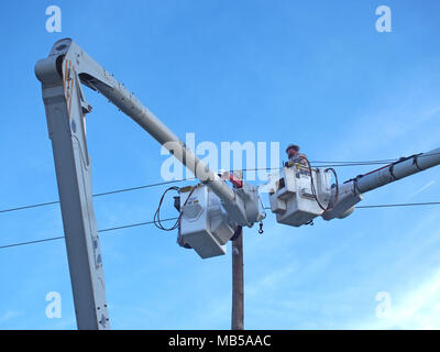 Emergency workers repairing damaged electrical wire which caused a power outtage, Orlando, Florida © Katharine Andriotis - Stock Photo