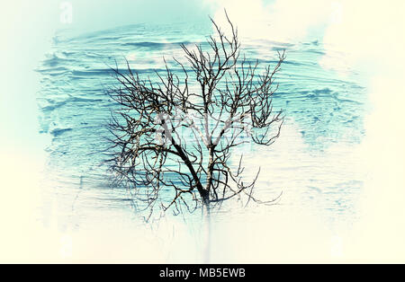 dreamy and abstract image of the bare branches at the forest, against sky. double exposure effect with watercolor brush stroke texture - Stock Photo