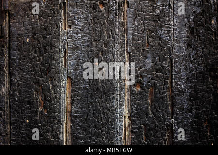 Weathered black burnt wooden planks background, closeup view, vertical stripes - Stock Photo