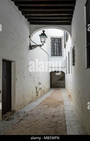 Street in the Jewish quarter (Juderia) in the Santa Cruz district in the Spanish city of Seville, Andalusia, Spain
