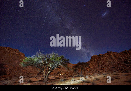 night shot of a tree with moonlight under sky with stars in tranquil landscape on Farm Klein-Aus, Geisterschlucht, Namibia, Africa - Stock Photo