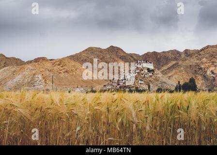 India, Ladakh region: Landscapes, monasteries and ladakhian religious life Photo: Alessandro Bosio - Stock Photo