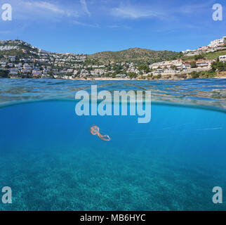 Spain coastline with buildings on Costa Brava and neptune grass  with a jellyfish underwater, split view above and below surface, Mediterranean sea - Stock Photo