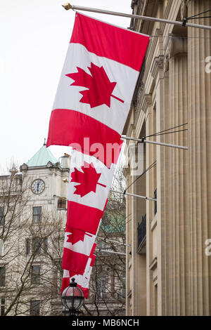 Maple Leaf flags (l'Unifolié) flying outside Canada House, the High Commission of Canada, on Trafalgar Square, London, UK - Stock Photo