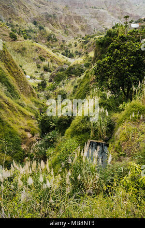 Cape Verde. Landscape of vegetation and mountains and some local dwellings of the Paul Valley. Cultivated sugarcane, coffee and mango plants growing on hills. Santo Antao Island - Stock Photo