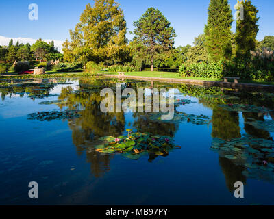 Large pond with water lilies in an old italian public park. - Stock Photo