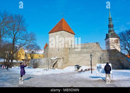 Komandandi Aed, in front of Neitsetorn, Maiden tower, Vanalinn, old town, Tallinn, Estonia - Stock Photo