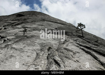 Huge granite face as seen on Half Dome's rock climbing route Snake dike in Yosemite Valley - Stock Photo