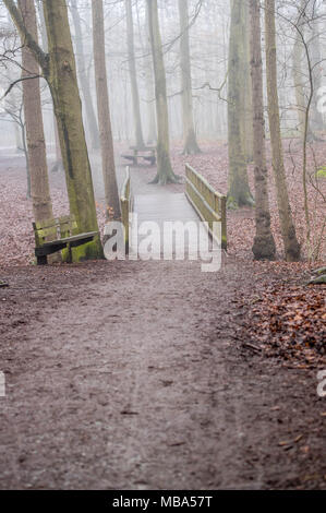 Thorndon Country Park, Brentwood, Essex, UK. 9th April, 2018. 9th April 2018   A heavy mist descended on Thorndon Country Park, Brentwood, Essex in mid-afternoon.  The park is popular with local dog walkers and ramblers.Credit Ian Davidson/Alamy Live News - Stock Photo
